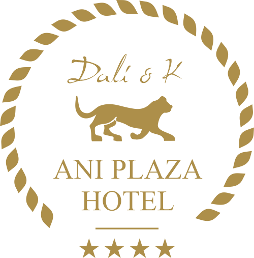 Home - Ani Plaza Hotel